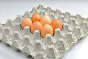 Коробки для яиц из картона