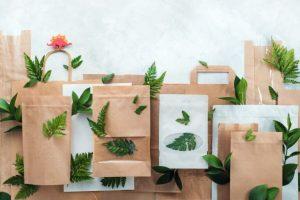 Экологическая упаковка из картона